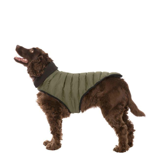 Lloyd Medium Dog Puffer Jacket in Khaki