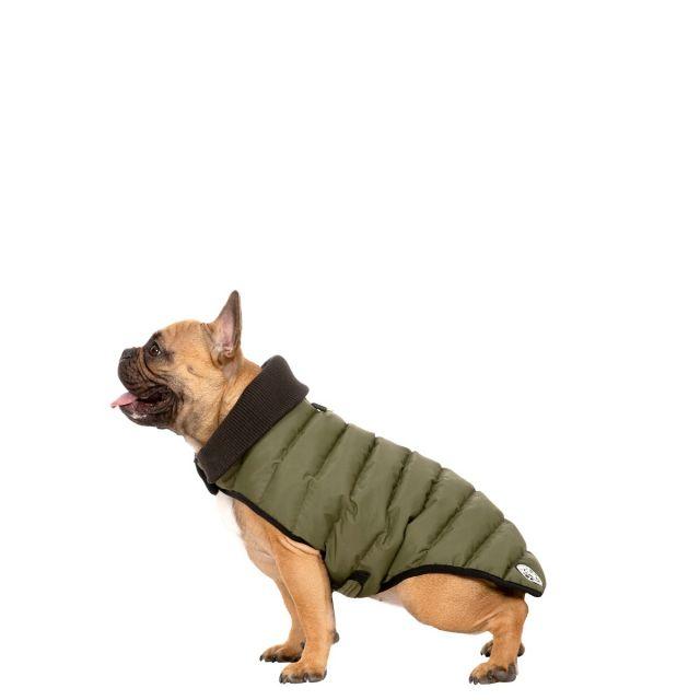Lloyd Small Dog Puffer Jacket - KHA
