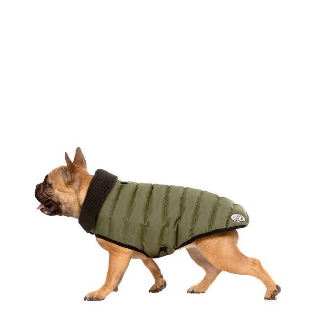 Lloyd Small Dog Puffer Jacket in Khaki