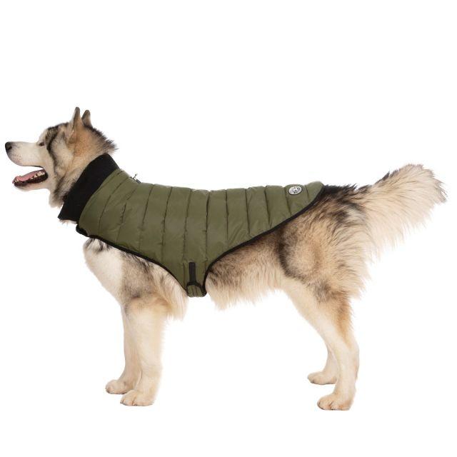 Lloyd XL Dog Puffer Jacket - KHA