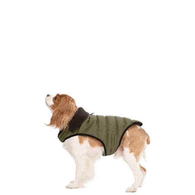 Lloyd XS Dog Puffer Jacket - KHA
