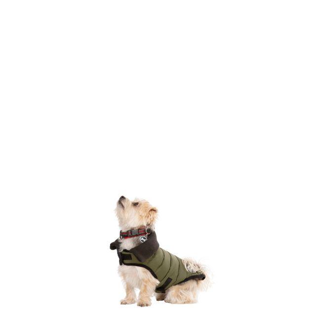 Lloyd XXS Dog Puffer Jacket in Khaki
