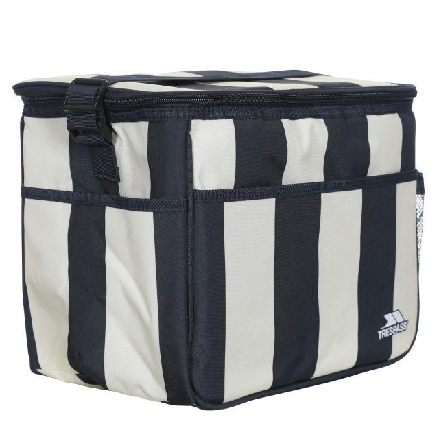 Striped Cool Box 15L in Navy Stripe
