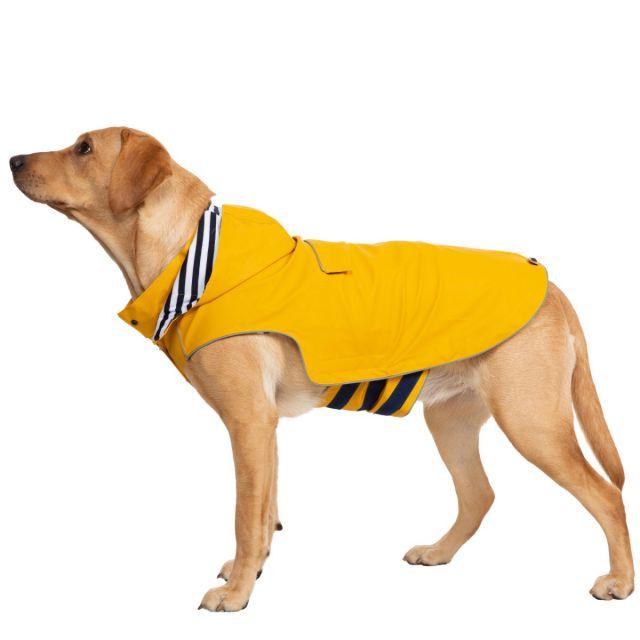 Seadog Large Waterproof Dog Coat