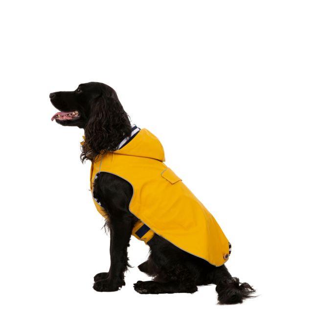 Seadog Medium Waterproof Dog Coat