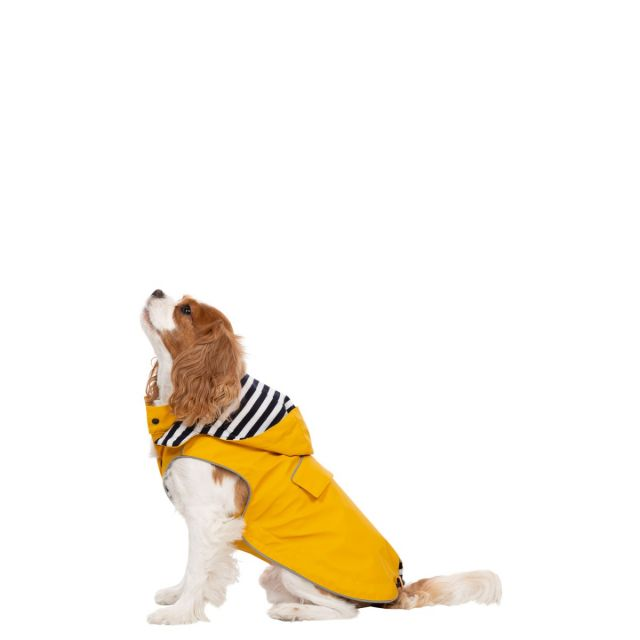 Seadog XS Waterproof Dog Coat