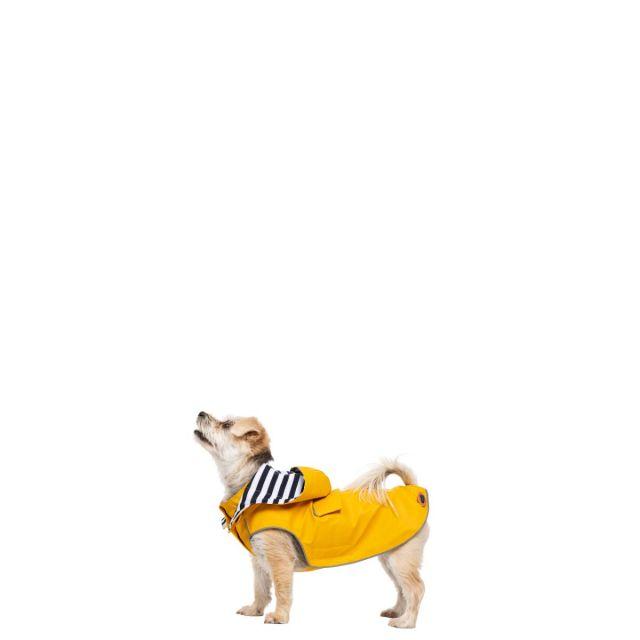 Seadog XXS Waterproof Dog Coat