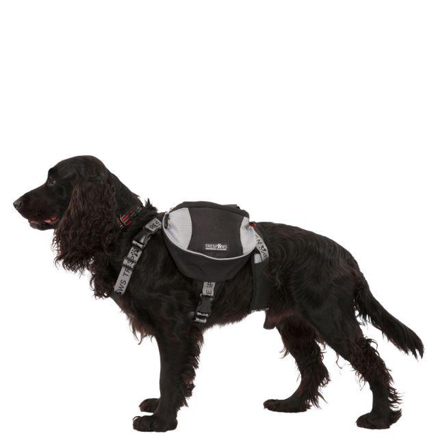 Trespaws Dog Backpack Harness Snooper Black Medium