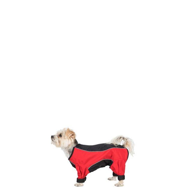 Tia XXS Dog Coat With Legs in Black