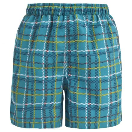 Chad Boys Swim Shorts in Teal