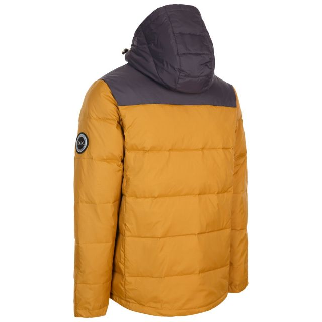 Cavanaugh Men's DLX Down Jacket in Beige