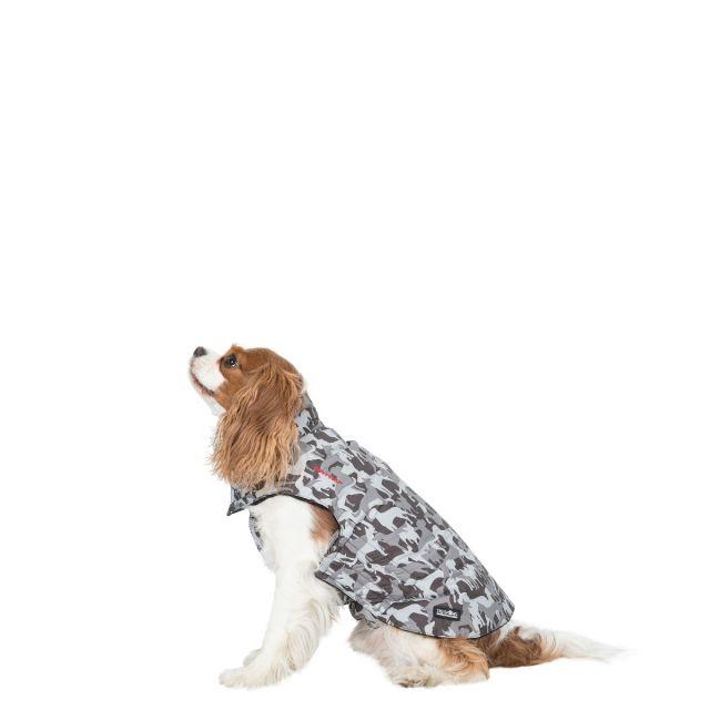 Trespass XS Printed Waterproof Dog Coat Charly X