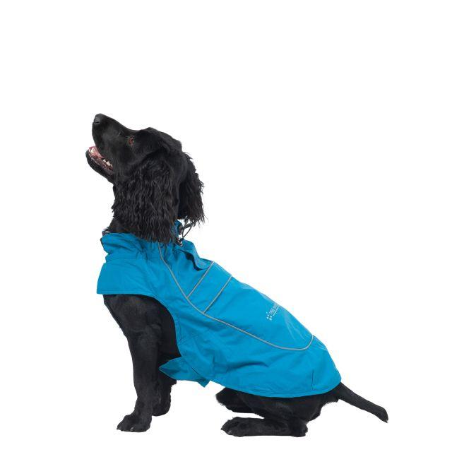 Trespass Dog Raincoat Cinder - MARINE M, Front view on mannequin