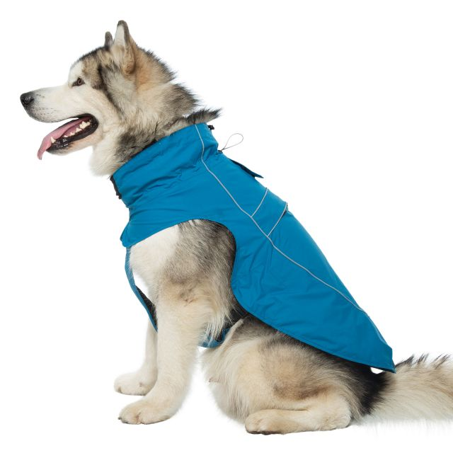 Trespass Dog Raincoat Cinder - MARINE XL, Front view on mannequin