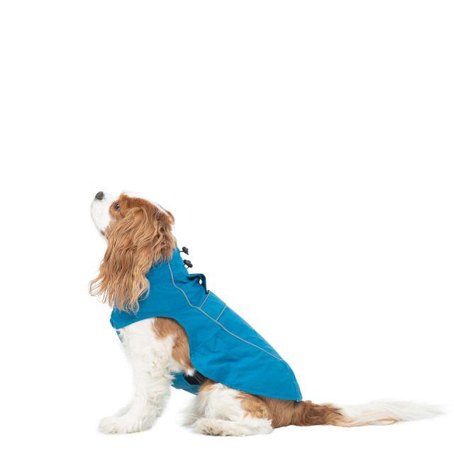 Trespass Dog Raincoat Cinder - MARINE XS, Front view on mannequin