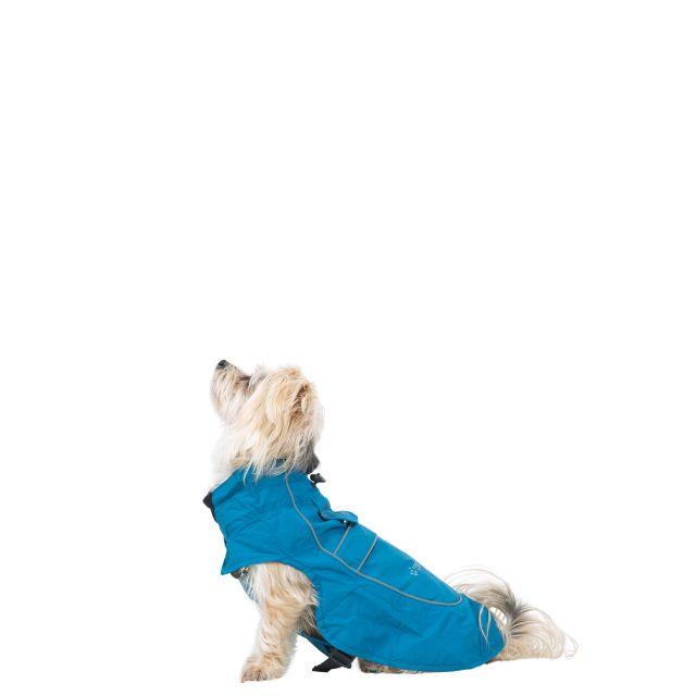 Trespass Dog Raincoat Cinder - MARINE XXS, Front view on mannequin
