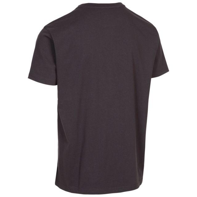 Trespass Men's Casual Short Sleeve Graphic Mountain T-Shirt Daytona Grey