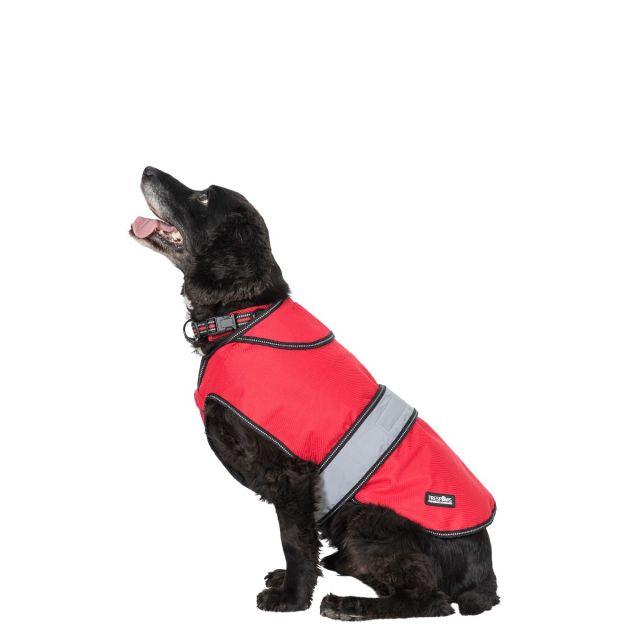 Trespass Medium 2 in 1 Waterproof Dog Coat Duke