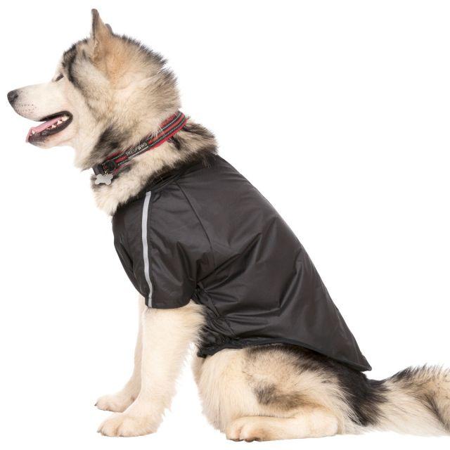 Khaos Waterproof Dog Coat - BLACK XL