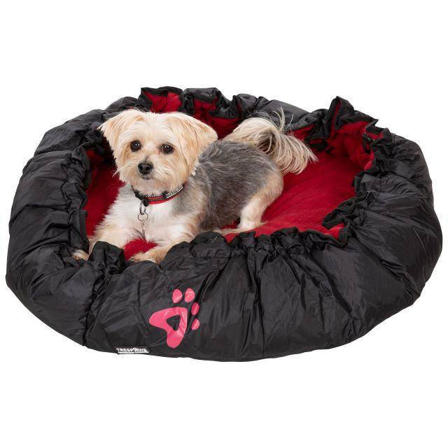 Kygo Travel Dog Bed in Black
