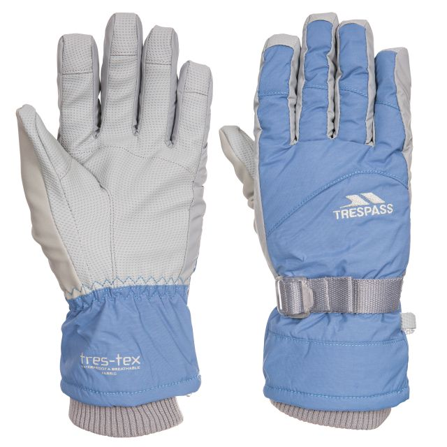 Vizza II Unisex Ski Gloves in Blue