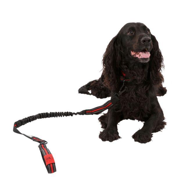 Trespaws Dog Bungee Lead Zathena Black