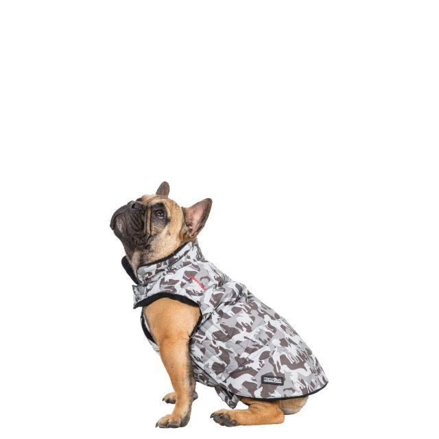 Trespass Small Printed Waterproof Dog Coat Charly X