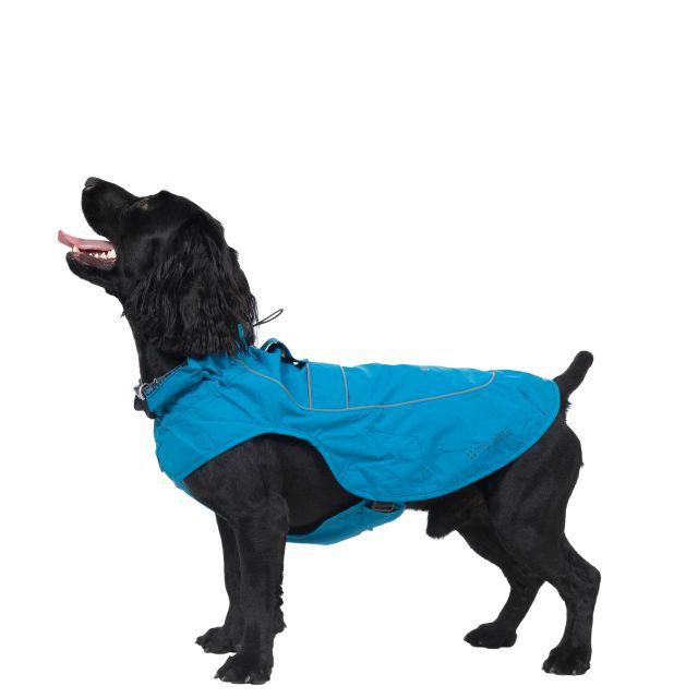 Trespass Dog Raincoat Cinder - MARINE M