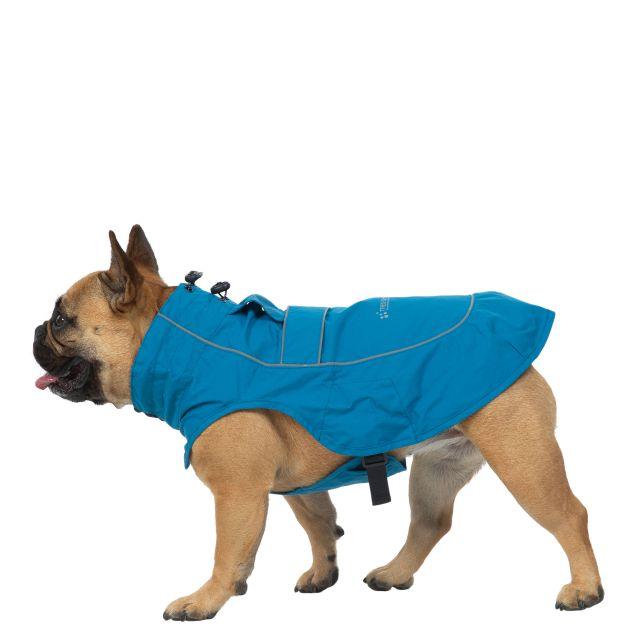 Trespass Dog Raincoat Cinder - MARINE S