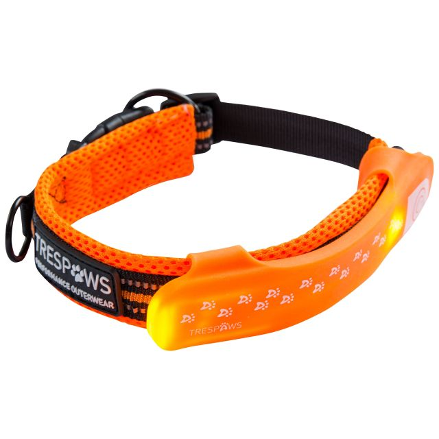 Disco Dog Hi-Vis LED Dog Collar in Yellow, Packed view