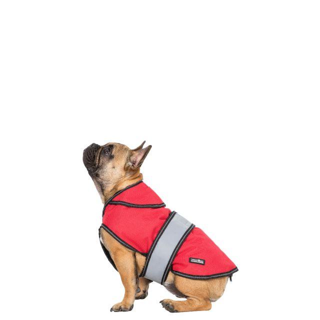 DUKE X -  2-IN-1 DOG JACKET - RED X S