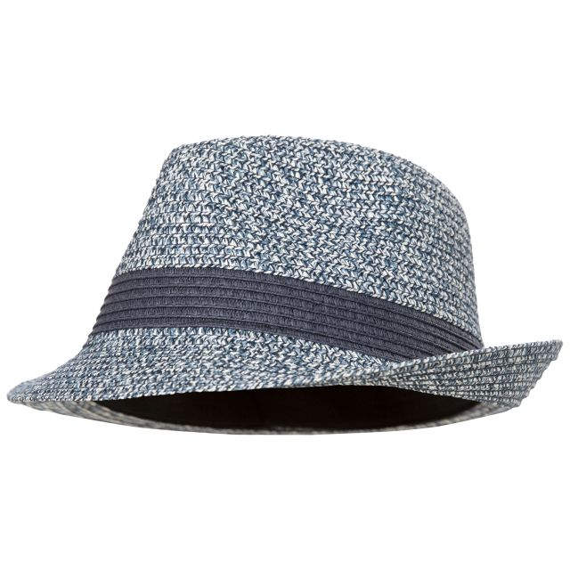Evanesce Adults' Trilby Hat in Navy, Hat at angled view