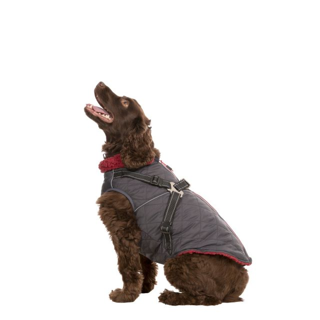 Hercules Windproof 2 in 1 Dog Coat - CARBON M