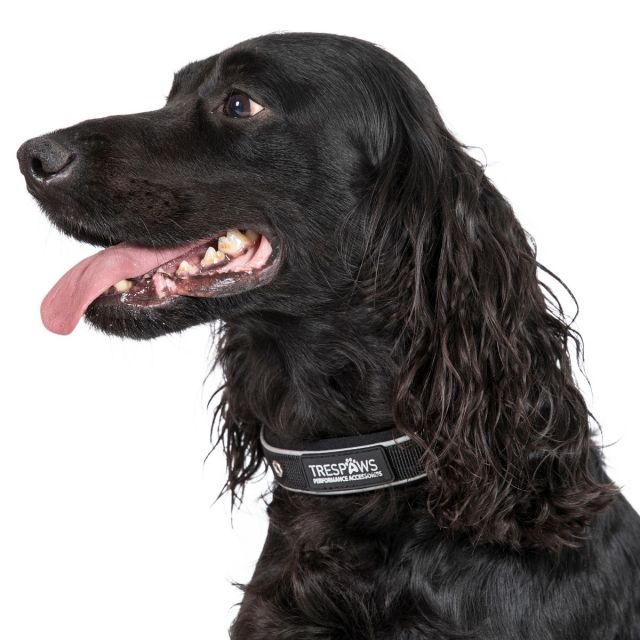 Keira Reflective Soft Touch Dog Collar - BLACK M