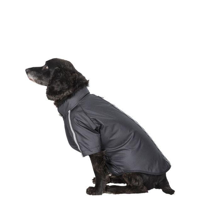 Khaos Waterproof Dog Coat - BLACK M