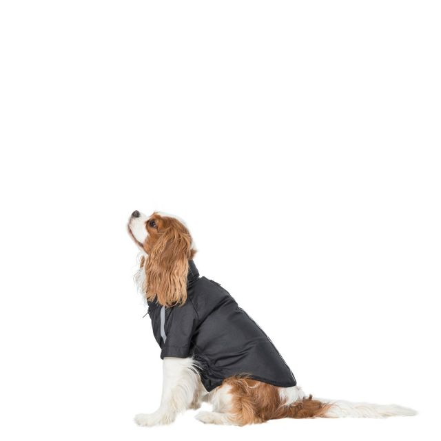 Khaos Waterproof Dog Coat - BLACK XS