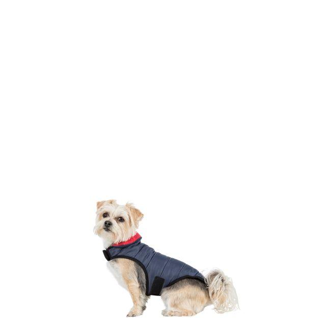 KIMMI - QUILTED DOG JACKET - FLINT M