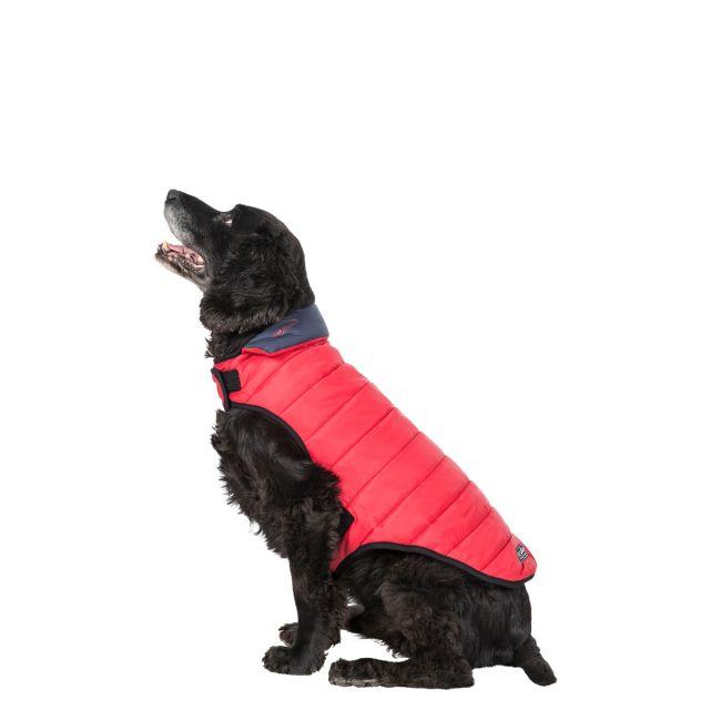 Trespass Medium Quilted Reversible Packaway Dog Coat Kimmi