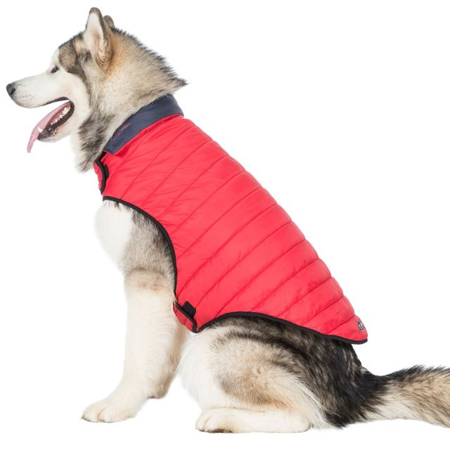 Trespass X-Large Quilted Reversible Packaway Dog Coat Kimmi