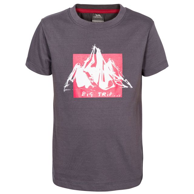 Noa Kids' Printed T-Shirt in Grey, Front view on mannequin