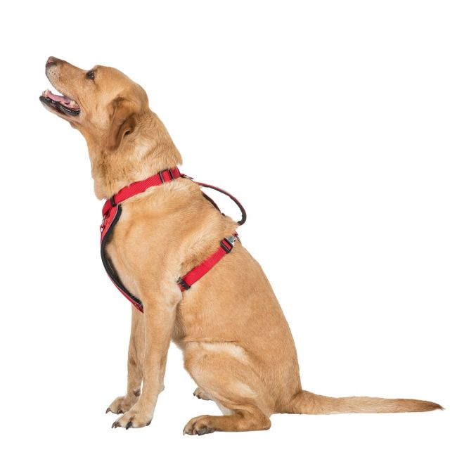 Tanked L/XL Reflective Dog Harness in Red