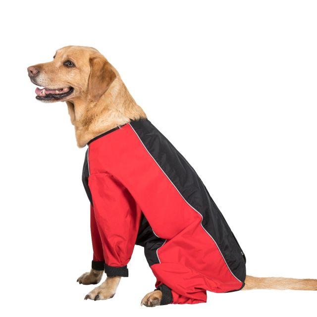 Tia Dog Coat With Legs - BLACK/RED L